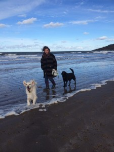 Jazz and Binkley on the beach